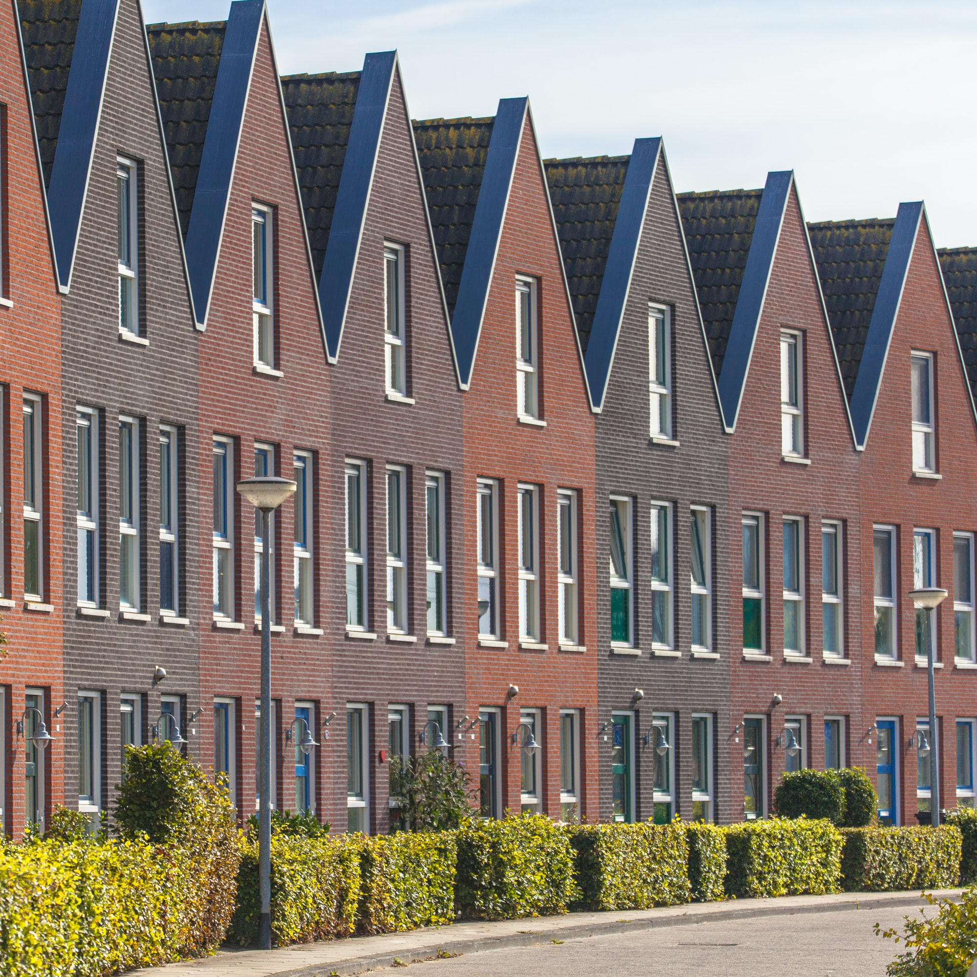 Houses in a Street with Hedgerows in Groningen